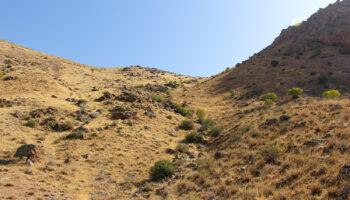 کوه گچیلیک