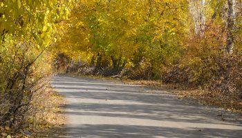 جاده پاییزی بخش کندوان