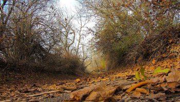طبیعت پاییزی روستای ایشلق