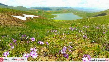 دریاچه طبیعی فاضل گولی