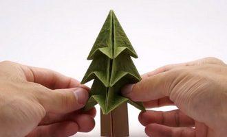 درخت کاغذی