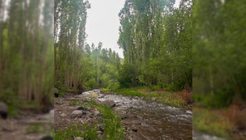 طبیعت روستای خلیفه لی