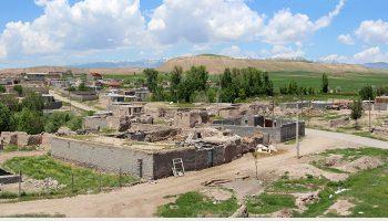 روستای زاویه (زیوه)