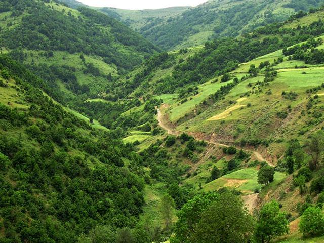 جنگل های ارسباران
