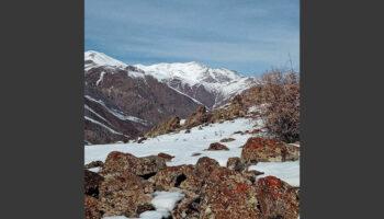 رشته کوه بوزقوش