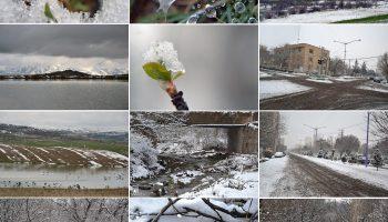 طبیعت زمستانی میانه