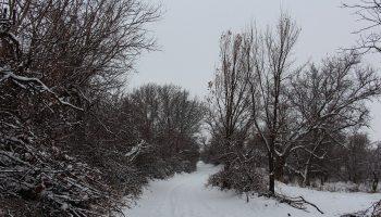 طبیعت روستای ایشلق
