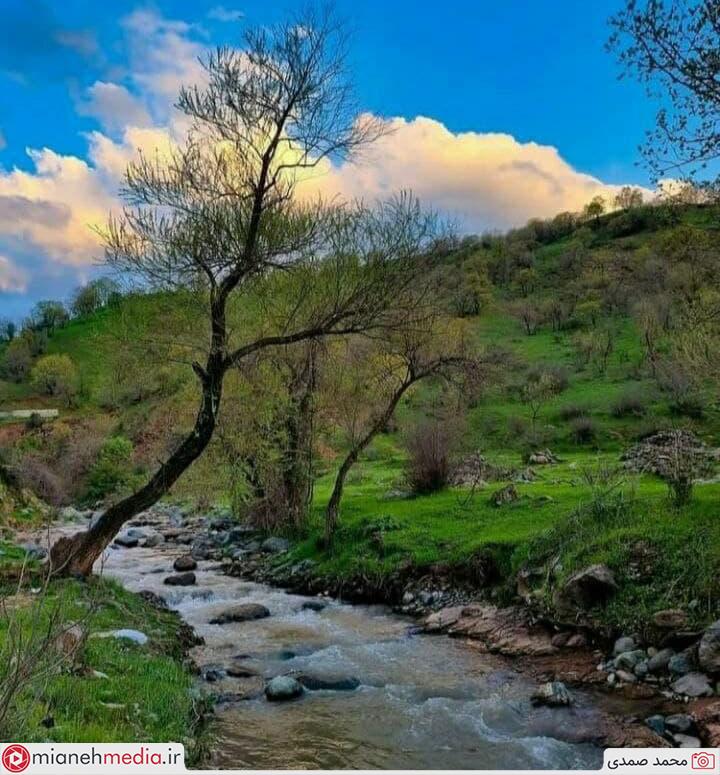 صاویری زیبا از طبیعت بهاری دهستان تیرچایی