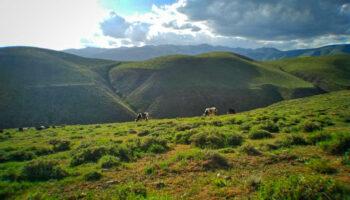 دامنه کوه بوزقوش