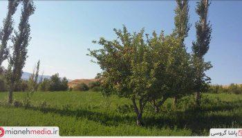 طبیعت روستای برنلیق حسین خان