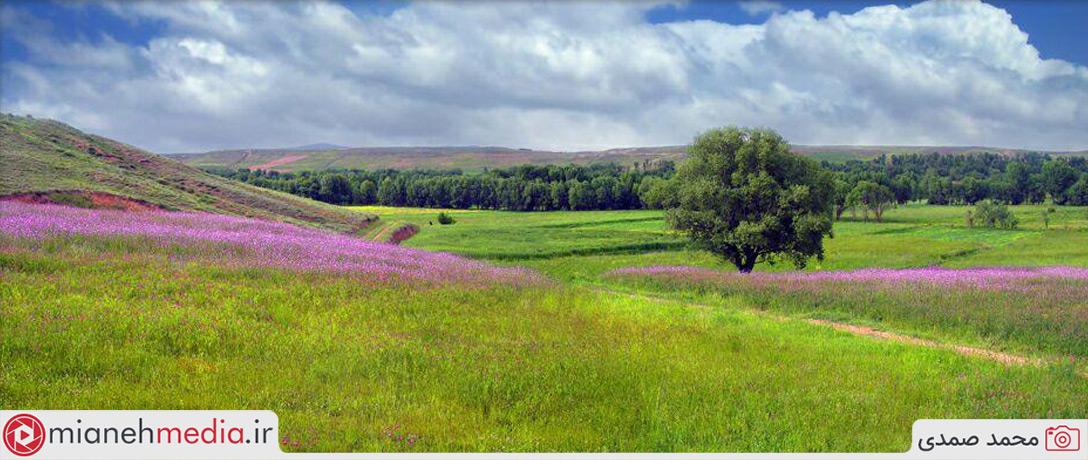 طبیعت زیبای روستای نقاباد واقع در دامنه کوهستان بوزقوش