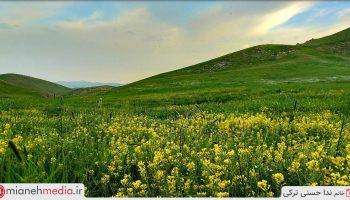 طبیعت روستای سیدلر