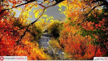 طبیعت پاییزی میانه