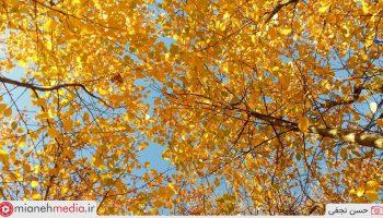 طبیعت پاییزی روستای آوین