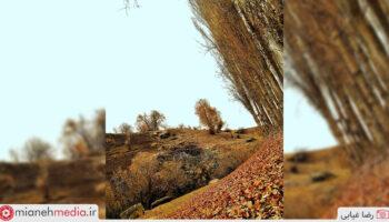 پاییز میانه