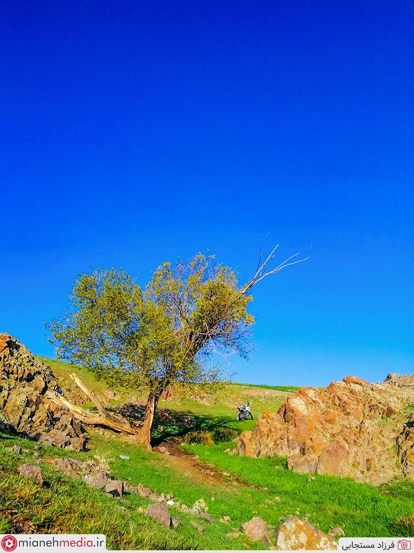 طبیعت روستای سیاه کمر