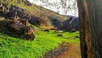 روستای سیه کمر