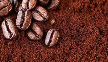 قهوه روبوستا چیست و چه تفاوتی با قهوه عربیکا دارد؟