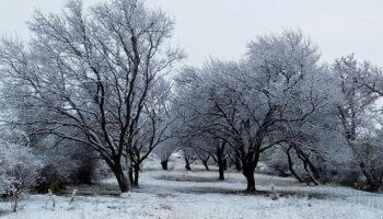 طبیعت روستای نووادیز